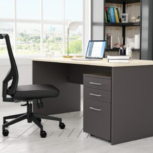 EkoSystem Desking